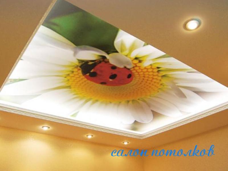 Натяжной потолок под ковер цвет